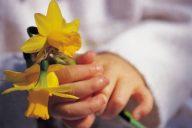 Varhaiskasvatus on varhaisen tuen palvelu, jonka rajaaminen asettaa perheet eriarvoiseen asemaan